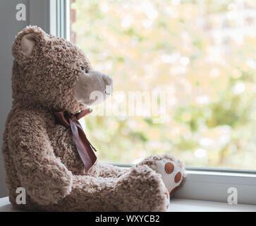 Un ours en peluche brun à la recherche dans le cadre d'une fenêtre Banque D'Images