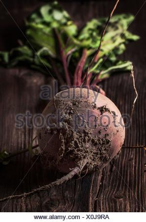 La betterave avec de la terre sur fond de bois Banque D'Images