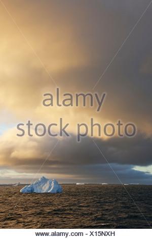 Les icebergs au lever du soleil dans la mer de Weddell, Antarctique, mer de Weddell, Antarctique Banque D'Images