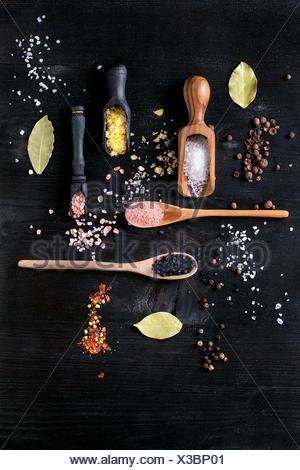Variété de sel coloré de safran jaune, rose, noir, blanc de l'Himalaya et la fleur de sel de mer dans des cuillères en bois avec black, piment, piment de pepp Banque D'Images