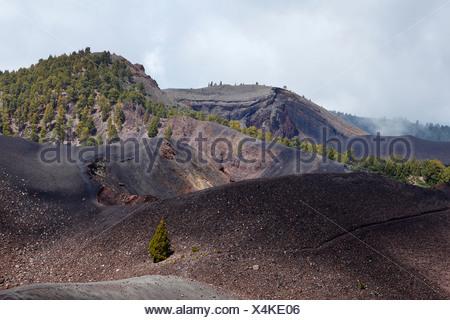Vue depuis le sommet, Deseada Cumbre Vieja, 'Ruta de los Volcanes, Route des volcans, La Palma, Canary Islands, Spain, Europe Banque D'Images