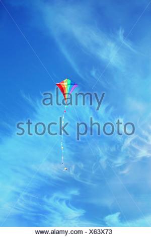 cerf-volant Banque D'Images
