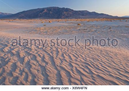 Dunes de sable dans la Death Valley National Park, California, USA Banque D'Images
