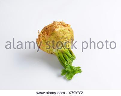 Céleri-rave frais (Apium graveolens var. Rapaceum) Banque D'Images