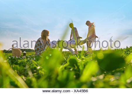 Groupe de jeunes amis adultes ayant la prétention au champ de course de brouettes Banque D'Images