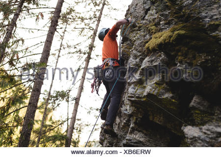Rock climber escalade la falaise rocheuse Banque D'Images
