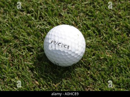 Close up de pratique sur une balle de golf putting green Banque D'Images