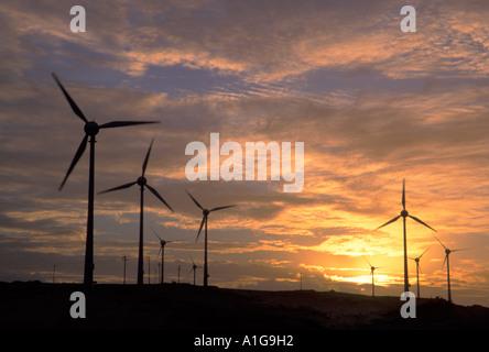 10 MW d'éoliennes en Amérique du Sud au coucher du soleil près de Fortaleza, Ceará, Brésil Banque D'Images