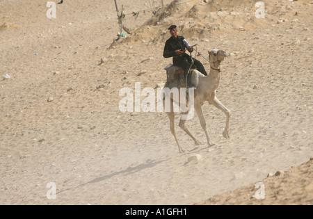 Police touristique montés sur des chameaux, essayez de supprimer les rabatteurs de la zone entourant les pyramides Banque D'Images