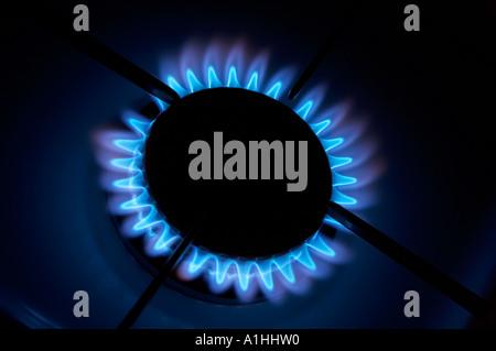 CLOSE UP DE FLAMMES BLEUES gravure sur plaques de cuisson à gaz unique Banque D'Images