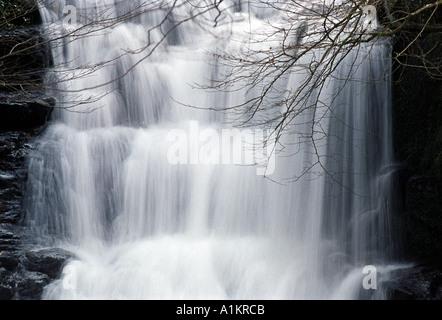 Watersmeet cascade dans la Grande-bretagne Devon UK Banque D'Images