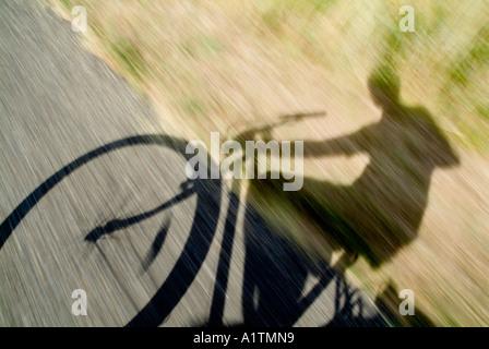 Ombre d'un cycliste - personne à vélo sur une route de campagne Banque D'Images