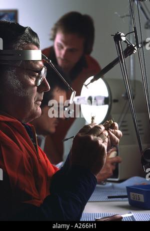 Un technicien d'âge moyen des modèles d'une prothèse dentaire avec soin dans un laboratoire de production. Banque D'Images