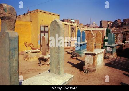 Tombes de la Cité des morts avec la citadelle derrière Le Caire Égypte P Hawkins Banque D'Images