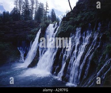 McArthur Burney Falls cascades dans un bassin rempli de brume à McArthur Burney State Park en Californie