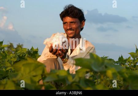 Agriculteur de Guajarat Inde pousse le coton qu'il vend sous le régime du Commerce Equitable à Marks and Spencer Banque D'Images