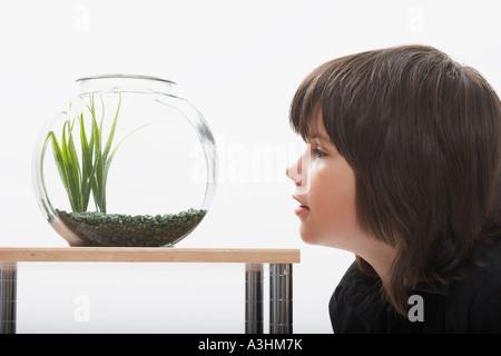 Boy Looking at Fishbowl Banque D'Images