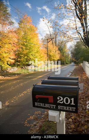 Des boîtes dans une scène d'automne Wilton CT USA Banque D'Images