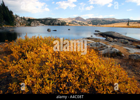 Lac de l'île au large de l'autoroute beartooth, forêt nationale de Shoshone, Wyoming