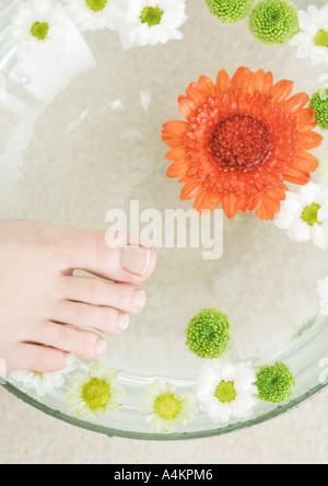 Woman's foot et bol de fleurs flottant dans l'eau Banque D'Images