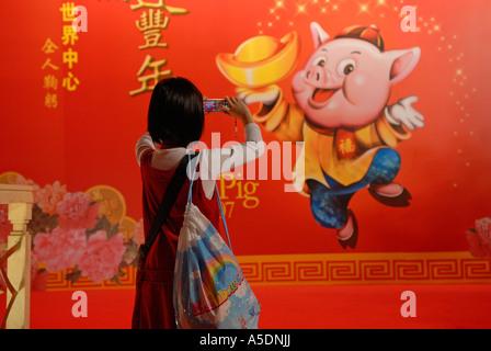 """Jeune fille chinoise de prendre la photo un panneau avec 'Année du cochon"""" au cours de la décoration Nouvel An lunaire Banque D'Images"""