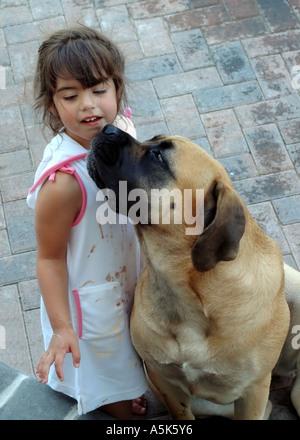 Chien de l'embrasser ou lécher la crème glacée sur le visage de fille Banque D'Images