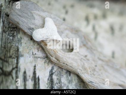 Pierre en forme de coeur sur fond de bois Banque D'Images