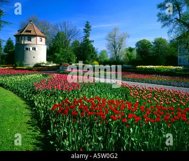 DE - Baden Wuerttemberg: printemps sur l'île de Mainau Banque D'Images