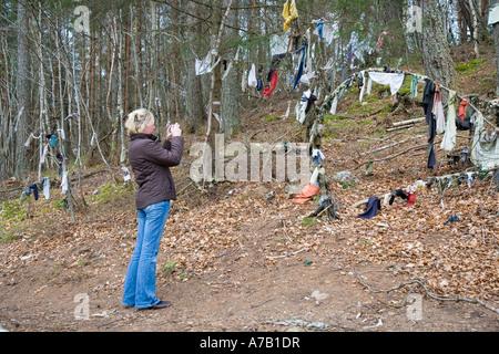 Prendre des photographies touristiques à Clootie même, des bandes de tissu ou de chiffons ont été laissés, attachés aux branches de l'arbre a un rituel de guérison. Munlochy, UK