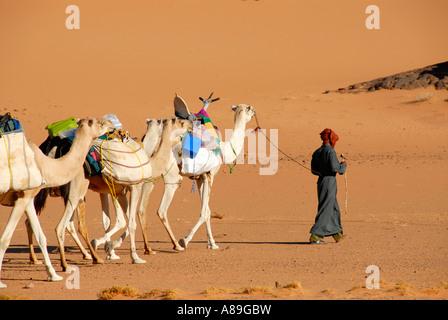 Promenades touareg avec des chameaux à travers le désert Acacus Libye Banque D'Images
