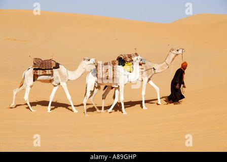 Promenades touareg avec des chameaux à travers le désert Libye Mandara Banque D'Images