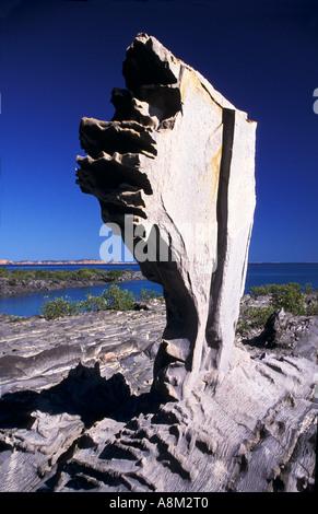La formation de pierre Edoline Mud Island Archipel Buccaneer NW Côte ouest de l'Australie Kimberley la verticale Banque D'Images