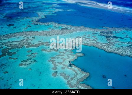 Coral Reef Hardy près de Parc national des Îles Whitsunday, Grande Barrière de Corail, Queensland, Australie l'horizontale Banque D'Images