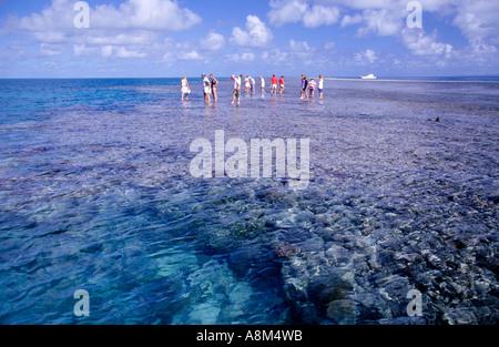 Les touristes la marche sur la Grande Barrière de corail en Australie Queensland N'horizontale Banque D'Images