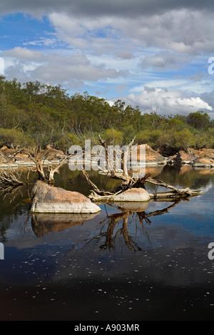 Rochers et arbres morts dans un outback australien ou piscine rivière billabong Banque D'Images
