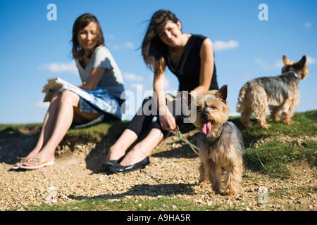 Deux femmes assises dans le parc avec leurs chiens Banque D'Images