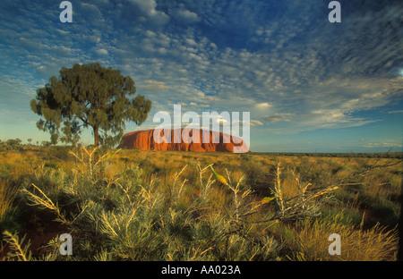 Ayers Rock Uluru Territoires du Nord