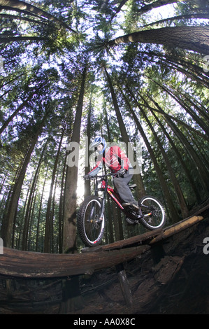 Vélo de montagne équitation le long d'un sentier du Bois de la Côte-Nord Vancouver Canada Banque D'Images