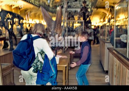 """Paris France, """"Museum Night ' au """"Musée d'histoire naturelle de l''exposition de dinosaures Banque D'Images"""