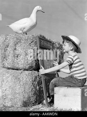 1950 garçon assis TABLEAU PHOTO DESSIN botte de foin debout Canard Banque D'Images
