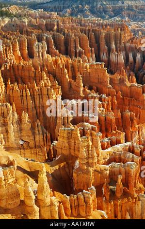 L'Amphithéâtre en hiver dans le Parc National de Bryce Canyon Utah USA