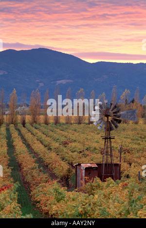 Ancien moulin à vent classique à Napa Valley Wine Grape Vineyards vertical au coucher du soleil Banque D'Images
