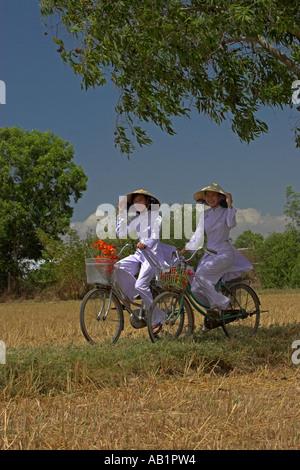 Deux jeunes femmes à chapeaux coniques et ao dai blanc traditionnel costume de la bicyclette sur le chemin des rizières Banque D'Images