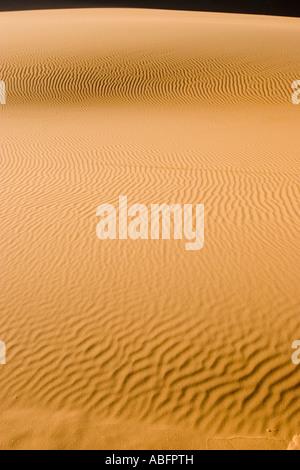 Dune de sable ondulé parfait lever de l'Erg Chebbi Maroc Banque D'Images