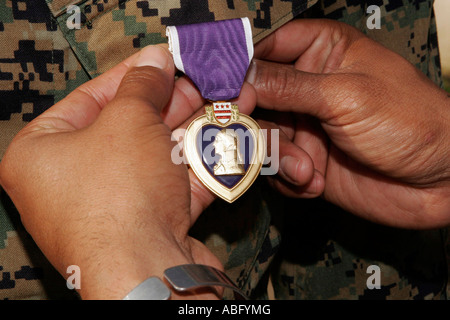 Purple Heart Award Banque D'Images