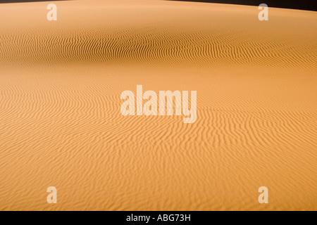 Grande dune de sable parfait ridée Erg Chebbi Maroc sunrise Banque D'Images
