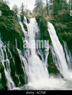 L'eau en cascade sur les pentes McArthur Burney Falls dans le Nord de la Californie