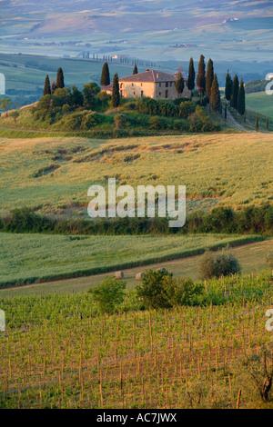Belvedere ferme près de San Quirico d'Orcia en Toscane Banque D'Images