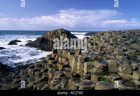 L'économie de plus en plus parmi les colonnes hexagonale de la Giant's Causeway, Co Antrim, en Irlande du Nord.