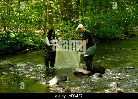 """Teenage boy and girl en utilisant 'kick-seine"""" à flux net de l'échantillon pour les indicateurs de la qualité de Banque D'Images"""